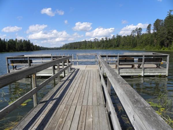 View of lake and pine across Lake Itaska